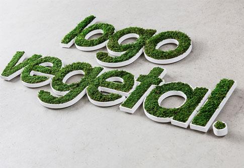 logo végétal lettre découpée